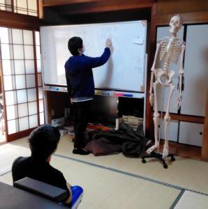 解剖学の講習